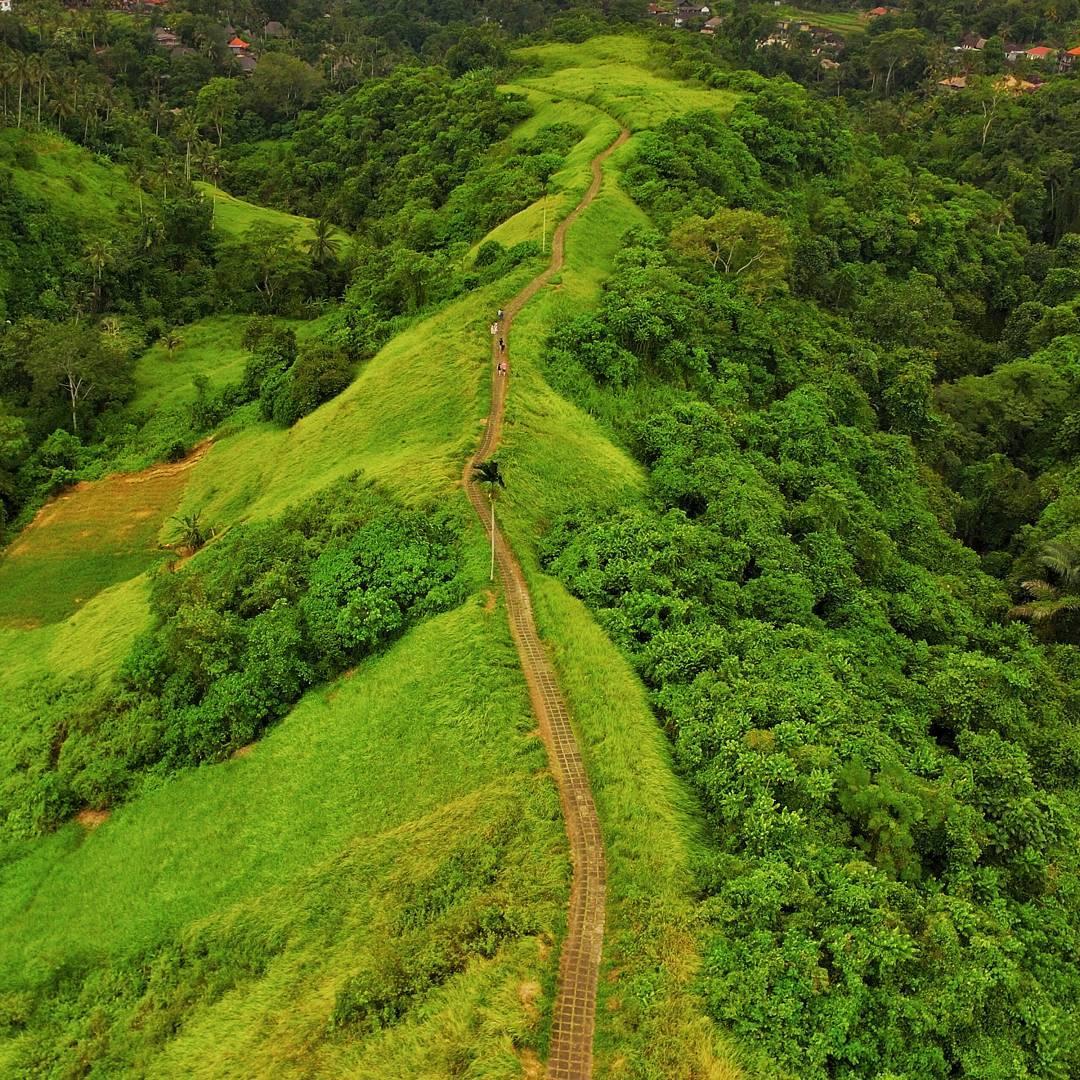 Menikmati Pesona Wisata Alam Bukit Campuhan Ubud Yang