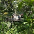 Agrowisata Bali Pulina Ubud