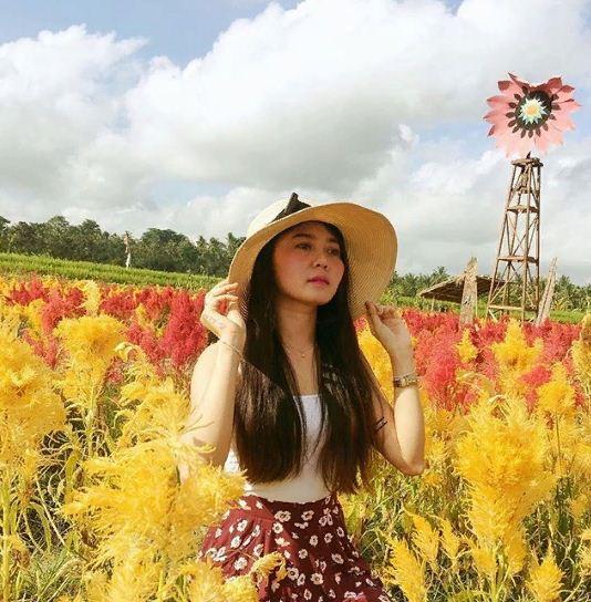 Agrowisata Belayu Florist Tabanan 2 » Agrowisata Belayu Florist Tabanan, Destinasi Kekinian Berburu Foto Instagramable Kebun Bunga