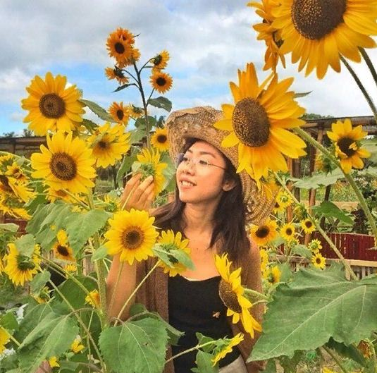 Agrowisata Belayu Florist Tabanan 3 » Agrowisata Belayu Florist Tabanan, Destinasi Kekinian Berburu Foto Instagramable Kebun Bunga