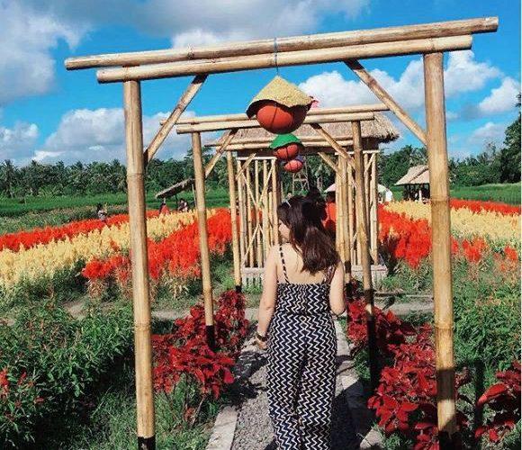 Agrowisata Belayu Florist Tabanan