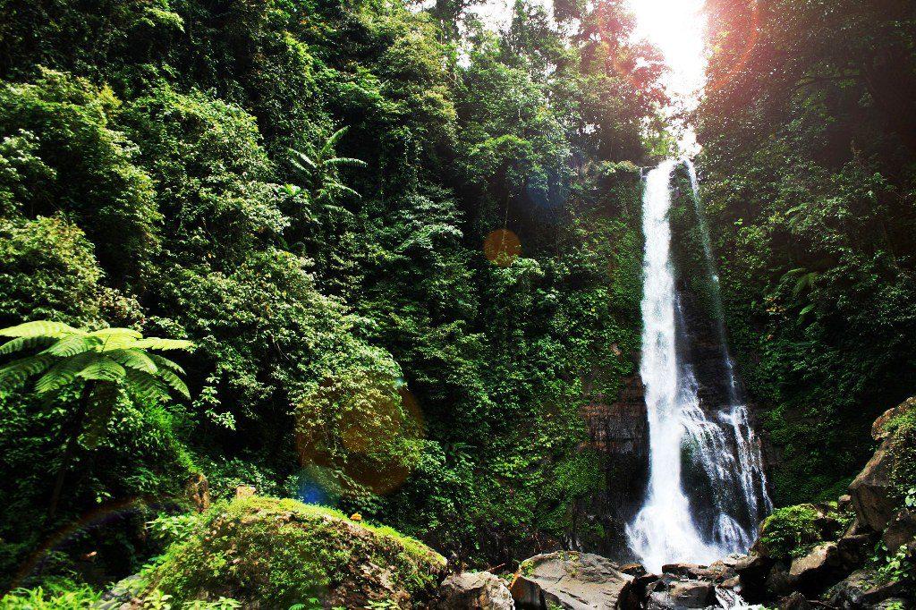 Air Terjun Gitgit 2 1024x682 » Segarnya Mandi di Guyuran Air Terjun Gitgit Bali