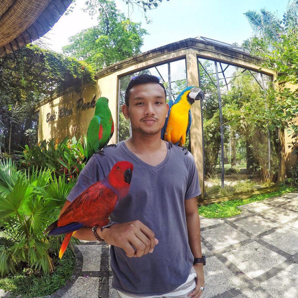 Bali Bird Park 4 1024x1024 » Bali Bird Park, Wisata Edukasi yang Menyenangkan dan Menarik Bersama Keluarga