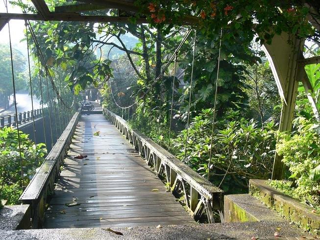 Bali Bird Walk Ubud 3 » Bali Bird Walk, Cara Unik dan Berbeda Menikmati Keindahan Alam Ubud