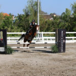 Bali Equestrian Centre Canggu