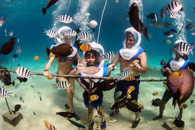 Bali Hai Aquanauts, Wisata Asyik Menjelajahi Keindahan Bawah Laut Pulau Dewata