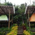 Bali Jungle Camping Padangan