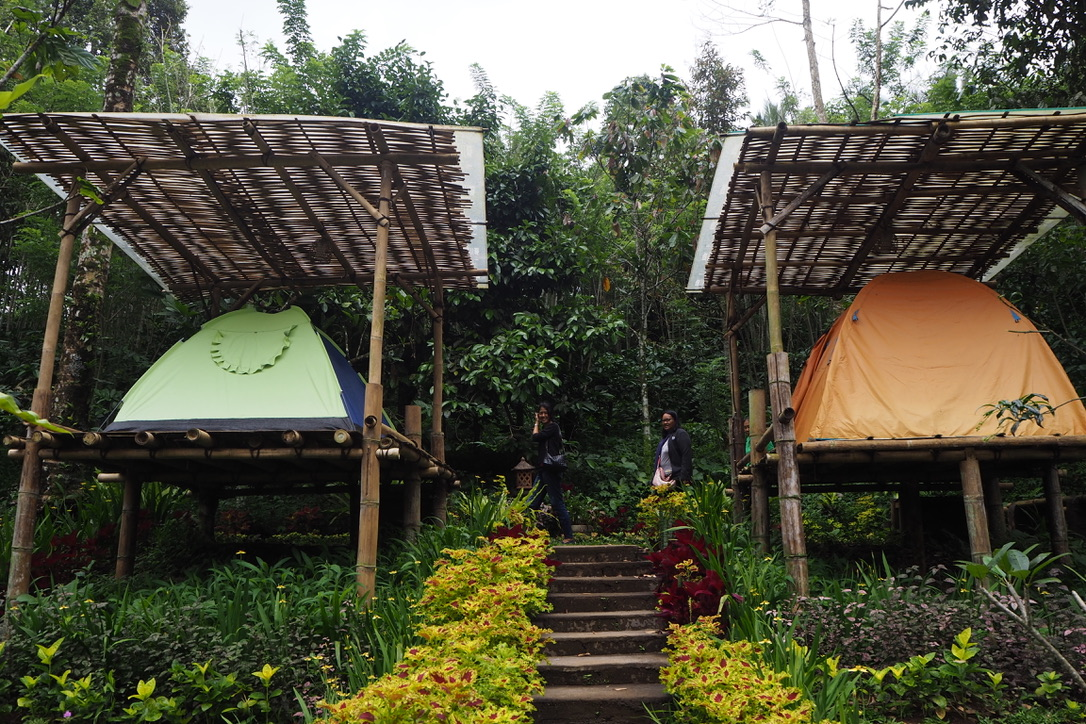 Bali Jungle Camping Padangan