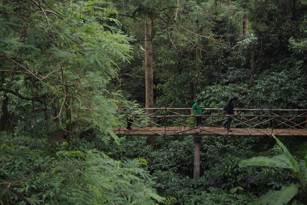 Bali Jungle Camping Padangan 2 1024x683 » Bali Jungle Camping Padangan, Cara Berbeda Menikmati Liburan ke Bali dengan Berkemah Mewah