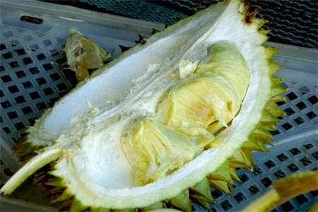 Buah buahan Khas Bali 2 » 5 Pilihan Buah-buahan Khas Bali yang Bisa Jadi Pertimbangan Oleh-Oleh