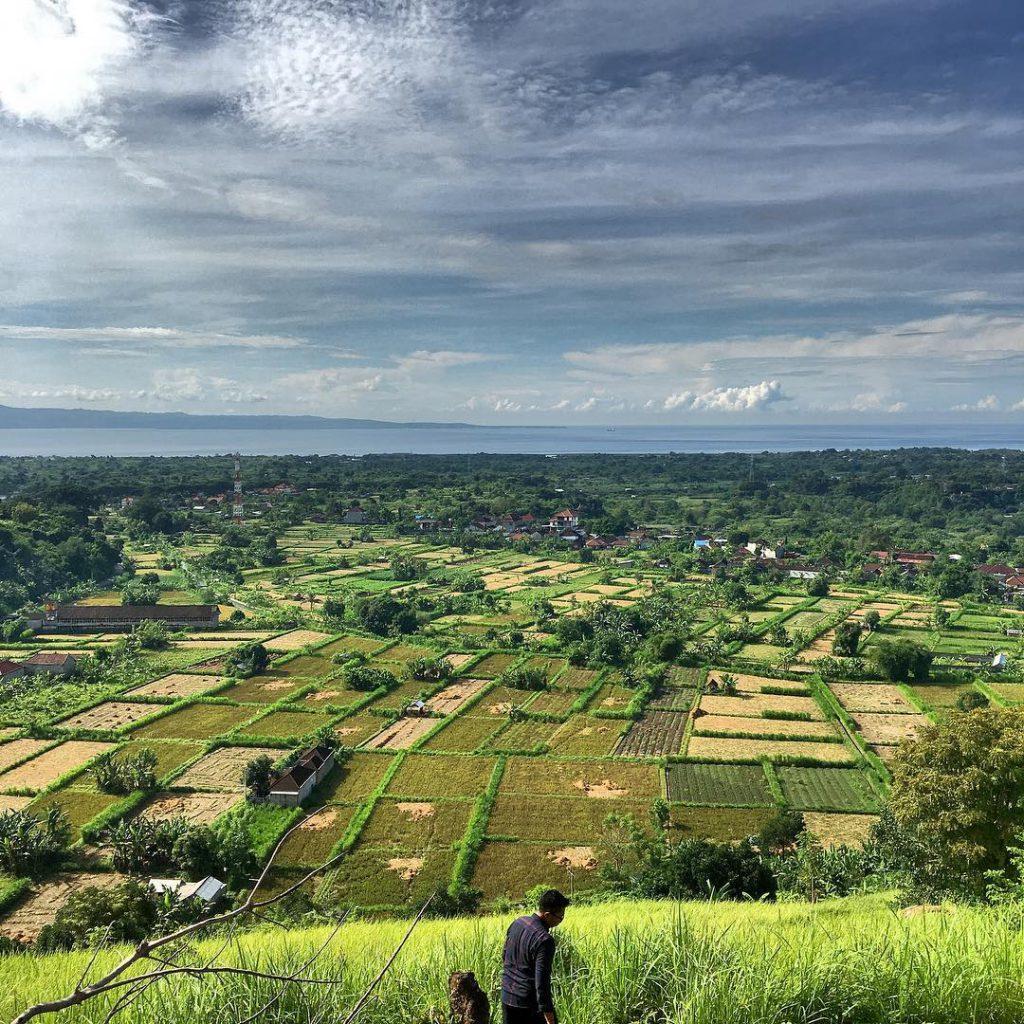 Bukit Belong Gunaksa 1 1024x1024 » Bukit Belong Gunaksa, Bukit Keren dengan Pemandangan Alam Hijau Klungkung