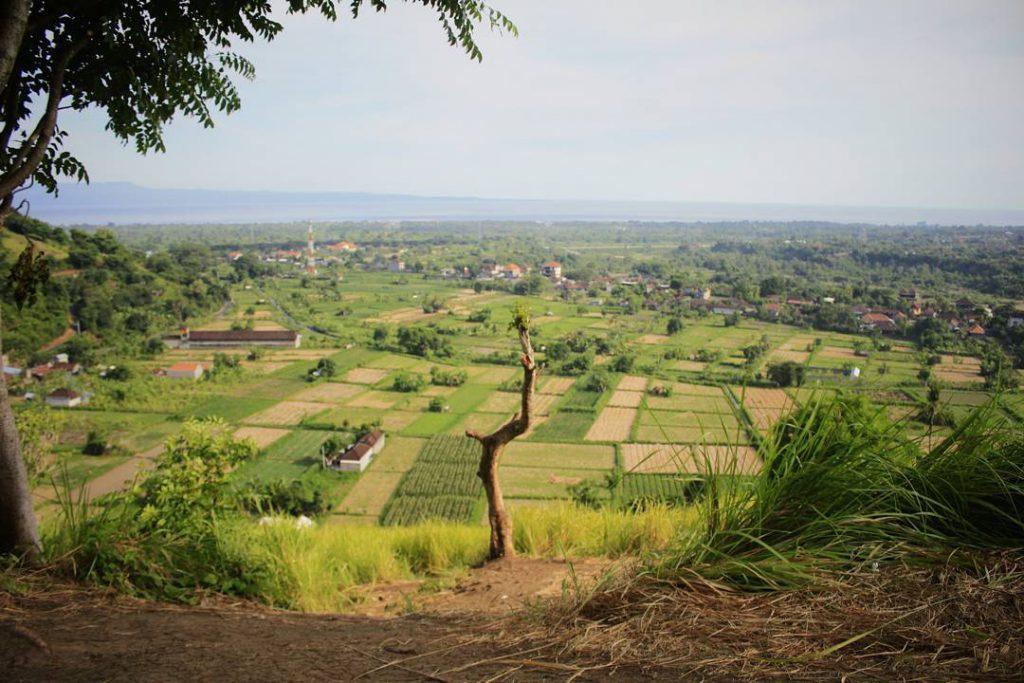 Bukit Belong Gunaksa 3 1024x683 » Bukit Belong Gunaksa, Bukit Keren dengan Pemandangan Alam Hijau Klungkung