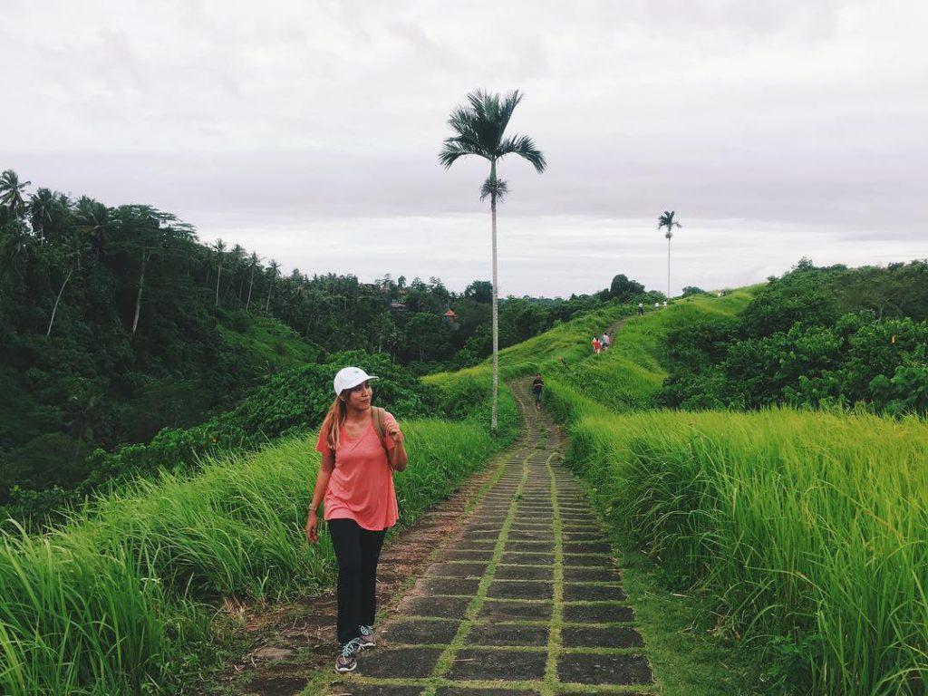 Bukit Campuhan Ubud 1 1024x768 » Menikmati Pesona Wisata Alam Bukit Campuhan Ubud yang Mengagumkan