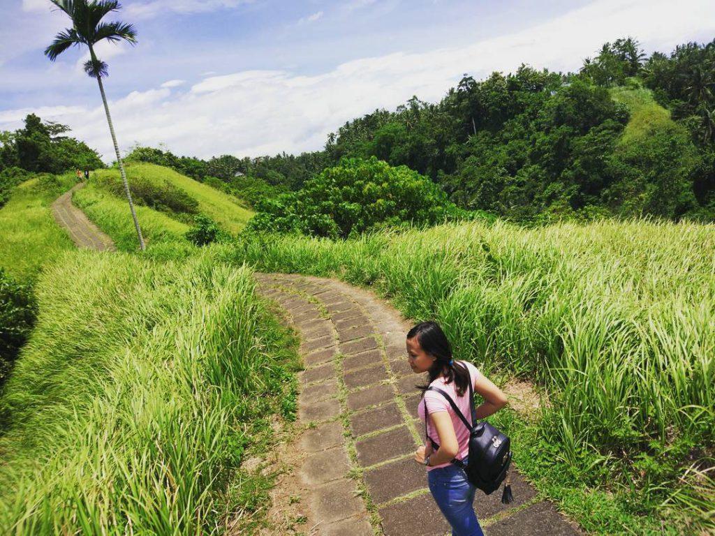 Bukit Campuhan Ubud 2 1024x768 » Menikmati Pesona Wisata Alam Bukit Campuhan Ubud yang Mengagumkan