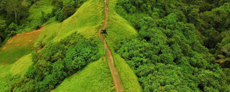 Bukit Campuhan Ubud