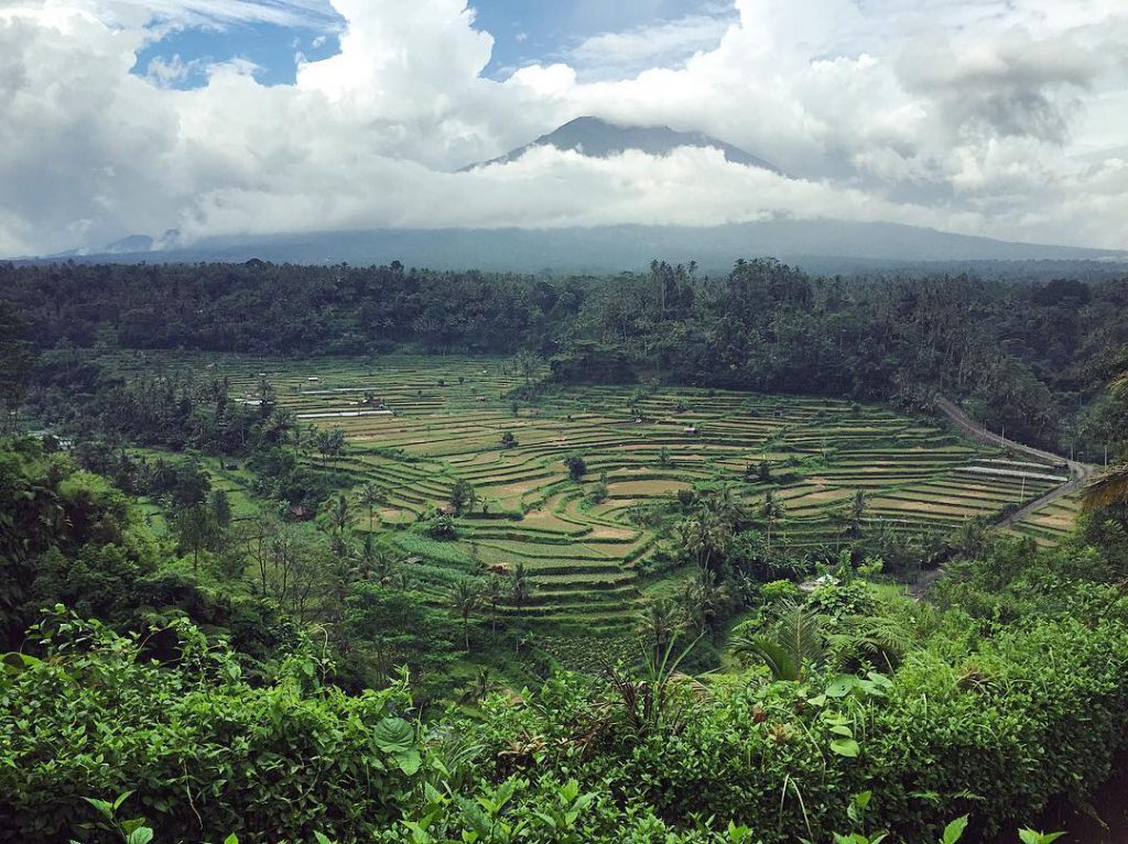 Bukit Jambul Karangasem 4 1024x767 » Bukit Jambul Karangasem, Pemandangan Hijau Menyejukkan Mata di Bali