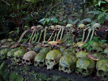 Deretan tengkorak mepasah di Desa Trunyan Bali