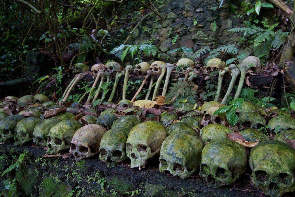 Deretan tengkorak mepasah di Desa Trunyan Bali 1 » Tradisi Pemakaman Unik Warisan Leluhur di Desa Trunyan Bali