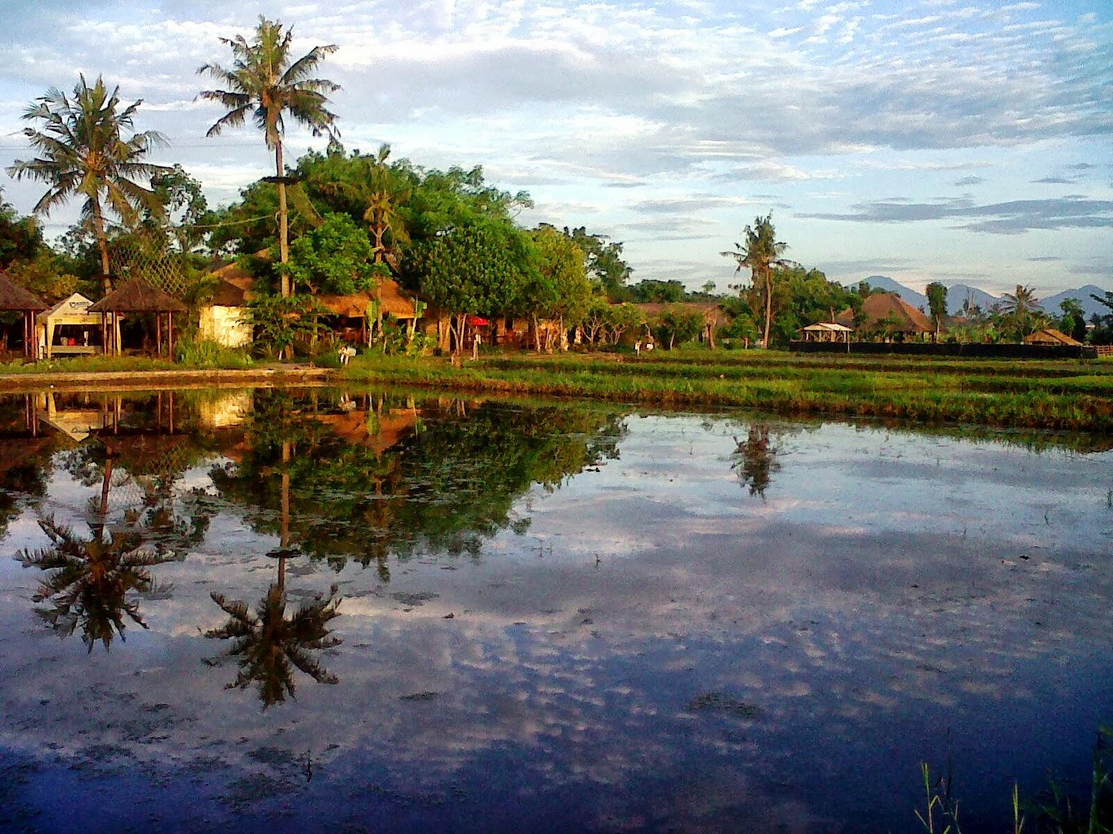 Desa Kertalangu Denpasar