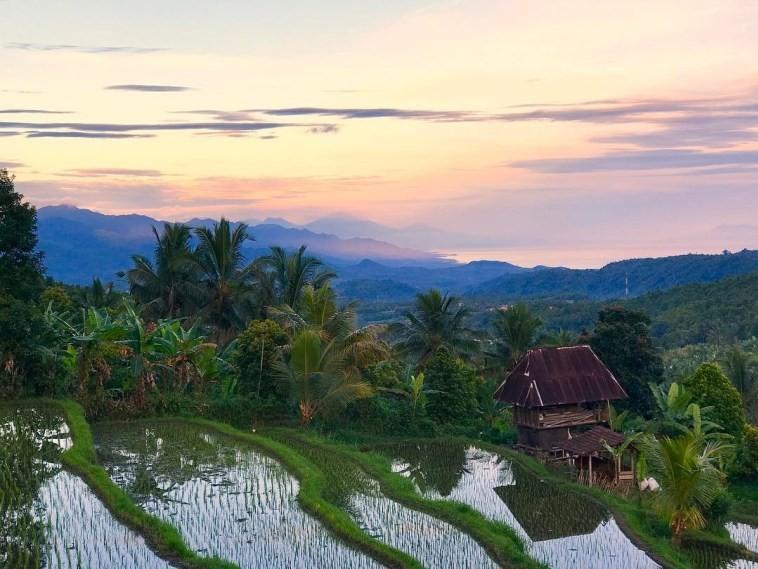 Desa Munduk Singaraja 2 » Desa Munduk Singaraja, Wisata Desa Negeri Atas Awan di Bali