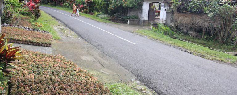 Desa Petiga Tabanan