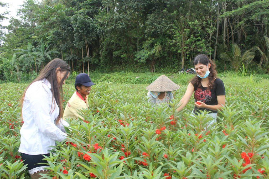 Desa Sobangan Mengwi