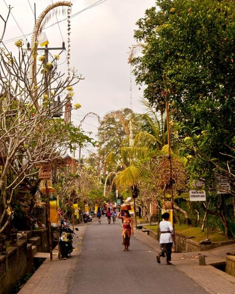 Desa Wisata Nyuh Kuning Ubud