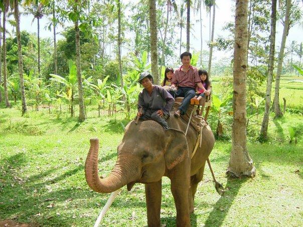 Desa Wisata Taro, Wisata Budaya ke Desa Tertua di Pulau Dewata