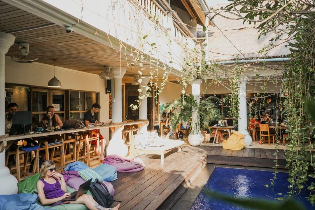 Dojo Bali di Canggu, Pilihan Coworking Space Nyaman  dan Harga Terjangkau