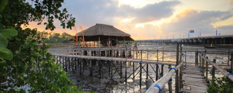Ekowisata Mangrove Wanasari Bali