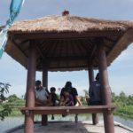 Ekowisata Subak Sembung Peguyangan