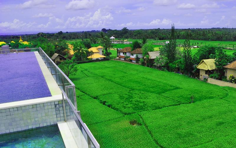 Evitel Resort Ubud – Pilihan Hotel Romantis dengan Hamparan Pemandangan Alami yang Ekonomis