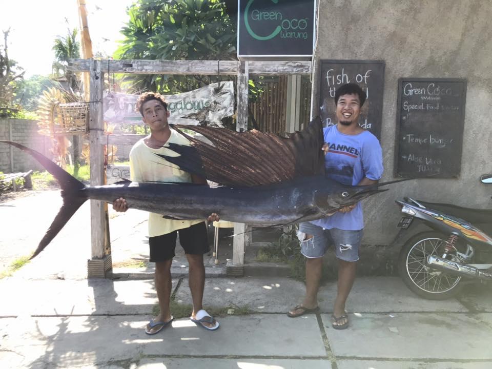 Green Coco Warung Amed 3 » Green Coco Warung Amed yang Menyediakan Deretan Menu Seafood Organik