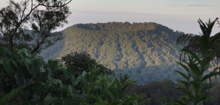 Gunung Lesung Bali 2 » Suasana Misterius dan Sakral Hutan Lumut di Gunung Lesung Bali