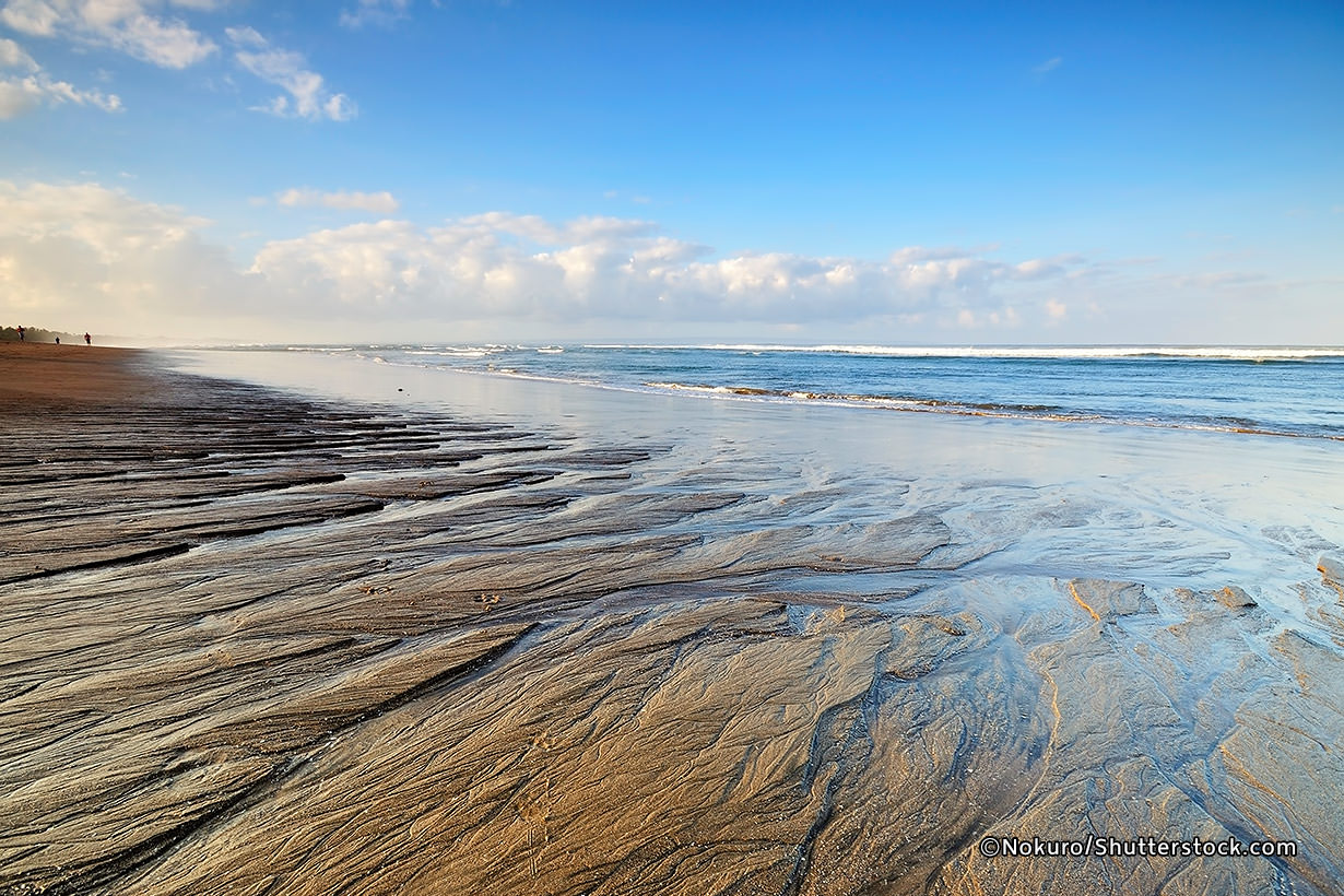 Pantai Berawa Canggu Bali, Pantai Indah dengan Suasana yang Sepi