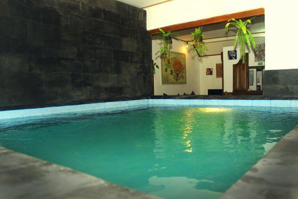 Hostel Friendly House Bali 3 » Hostel Friendly House Bali - Penginapan Murah untuk Backpacker dengan Desain Penuh Warna di Ubud