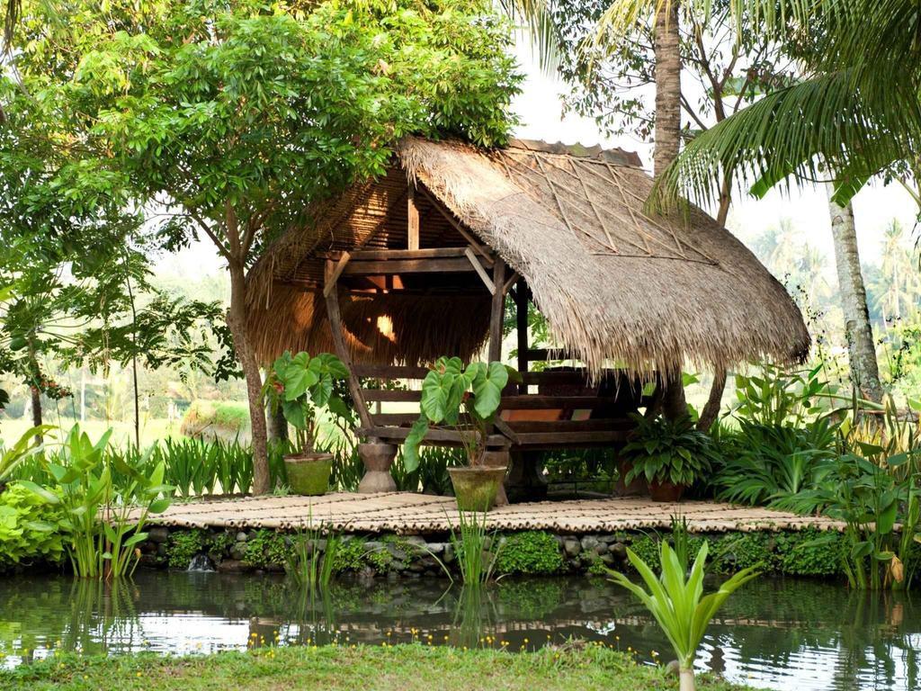 Hotel Omah Apik Ubud 4 1024x768 » Hotel Omah Apik Ubud, Penginapan Bernuansa Alami dengan Pemandangan Sawah di Depan Mata