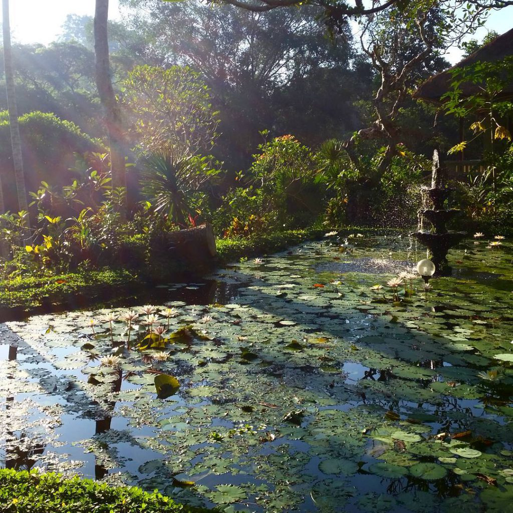 Hotel Tjampuhan and Spa 1 2 1024x1024 » Hotel Tjampuhan and Spa, Hotel Mewah dengan Suasana Klasik dan Legendaris di Ubud
