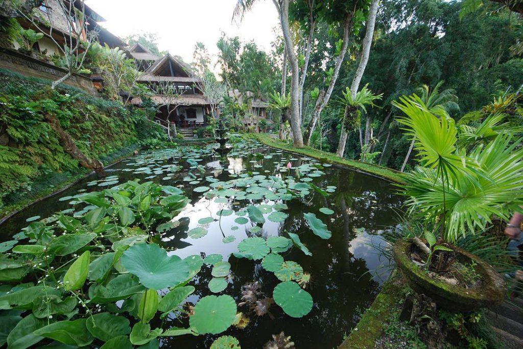 Hotel Tjampuhan and Spa 4 1024x685 » Hotel Tjampuhan and Spa, Hotel Mewah dengan Suasana Klasik dan Legendaris di Ubud