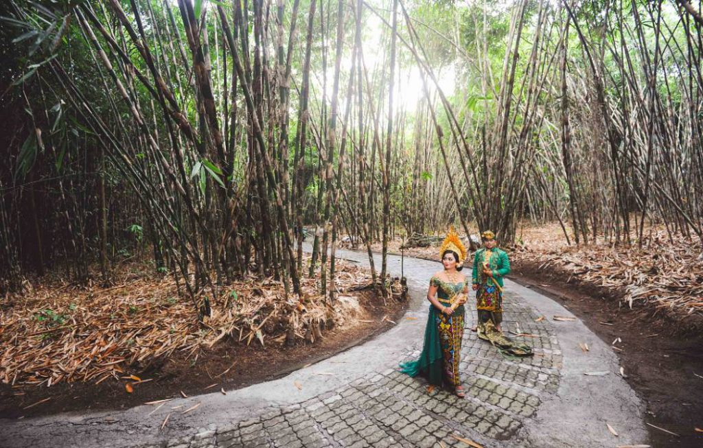 Hutan Bambu Penglipuran Bangli 2 1024x653 » Hutan Bambu Penglipuran Bangli, Tempat Wisata Instagramable di Bali