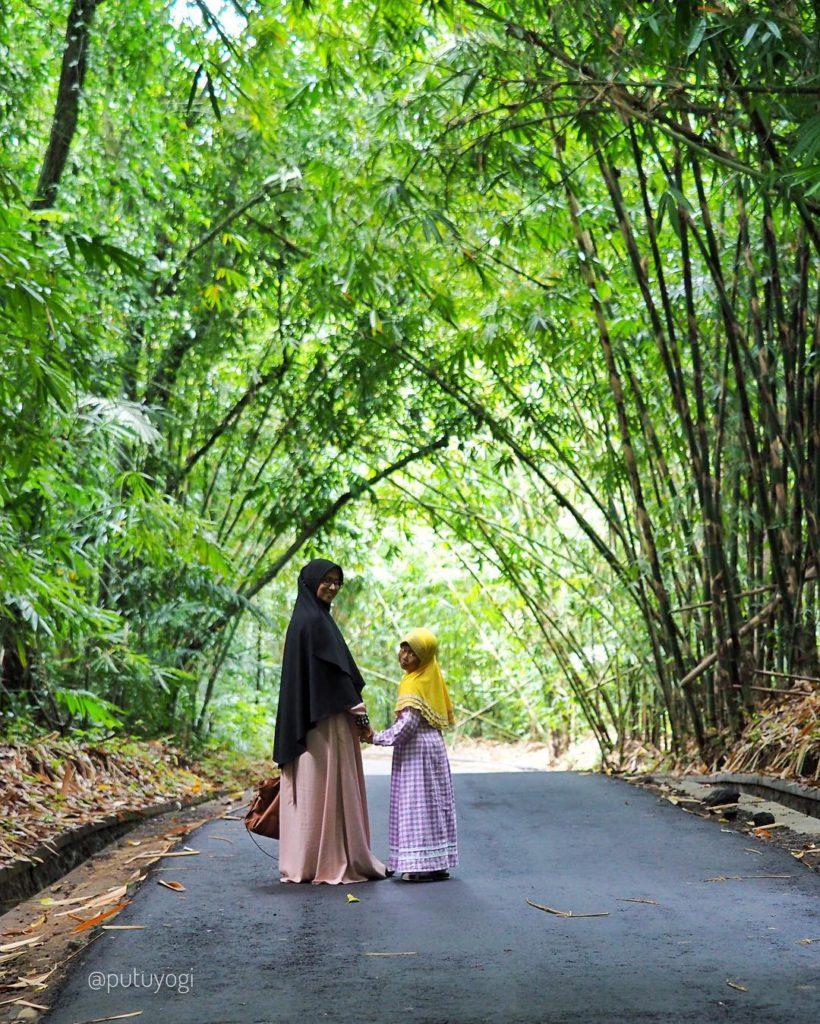 Hutan Bambu Penglipuran Bangli, Tempat Wisata Instagramable di