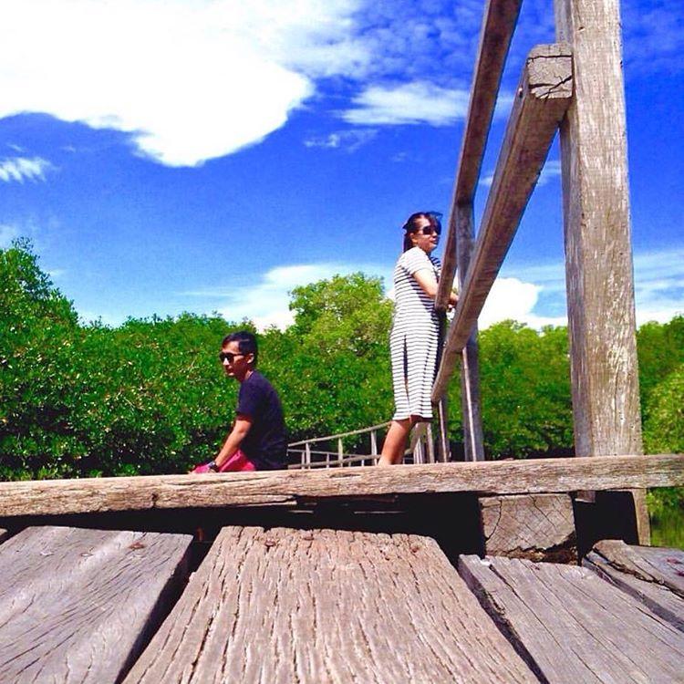 Hutan Mangrove Taman Hutan Raya Ngurah Rai Bali 2 » Wisata Alam Hutan Mangrove Taman Hutan Raya Ngurah Rai Bali yang Menakjubkan