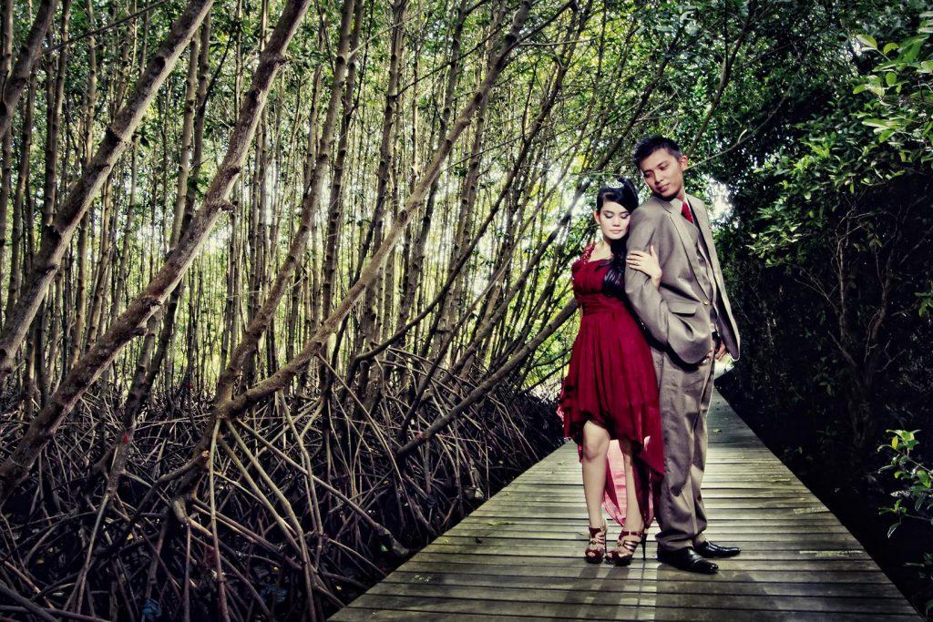 Hutan Mangrove Taman Hutan Raya Ngurah Rai Bali 4 1024x683 » Wisata Alam Hutan Mangrove Taman Hutan Raya Ngurah Rai Bali yang Menakjubkan