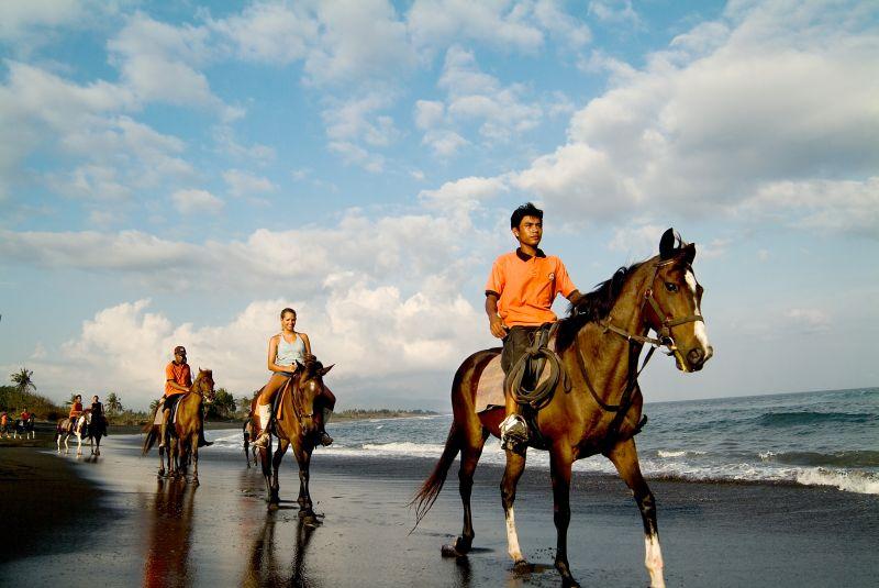 Liburan ke Pulau Bali 2 » Cara Asyik Menikmati Liburan ke Pulau Bali, Naik Kuda, Gajah, dan Unta!