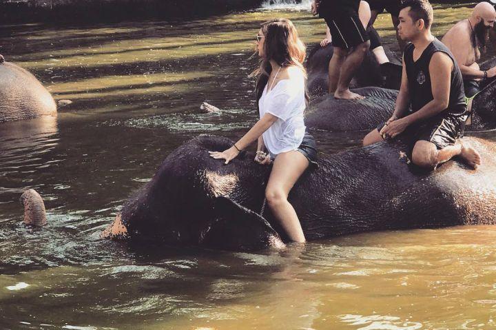 Cara Asyik Menikmati Liburan ke Pulau Bali, Naik Kuda, Gajah, dan Unta!