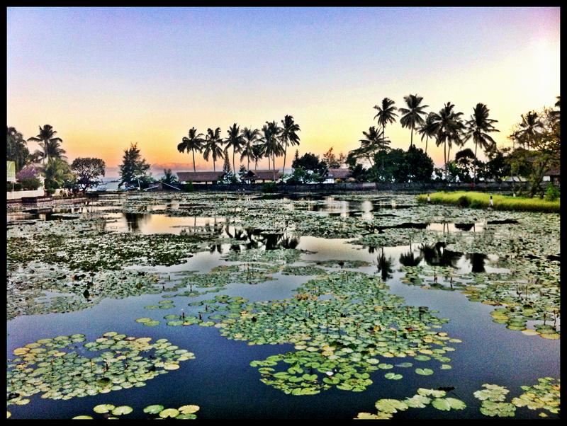Lotus Lagoon candidasa 2 » Lotus Lagoon Candidasa, Sensasi Berfoto Instagramable yang Alami di Istana Teratai