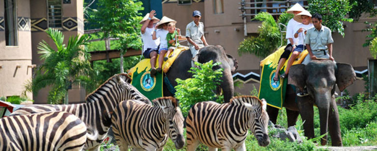 Mara River Safari Lodge Hotel Bali