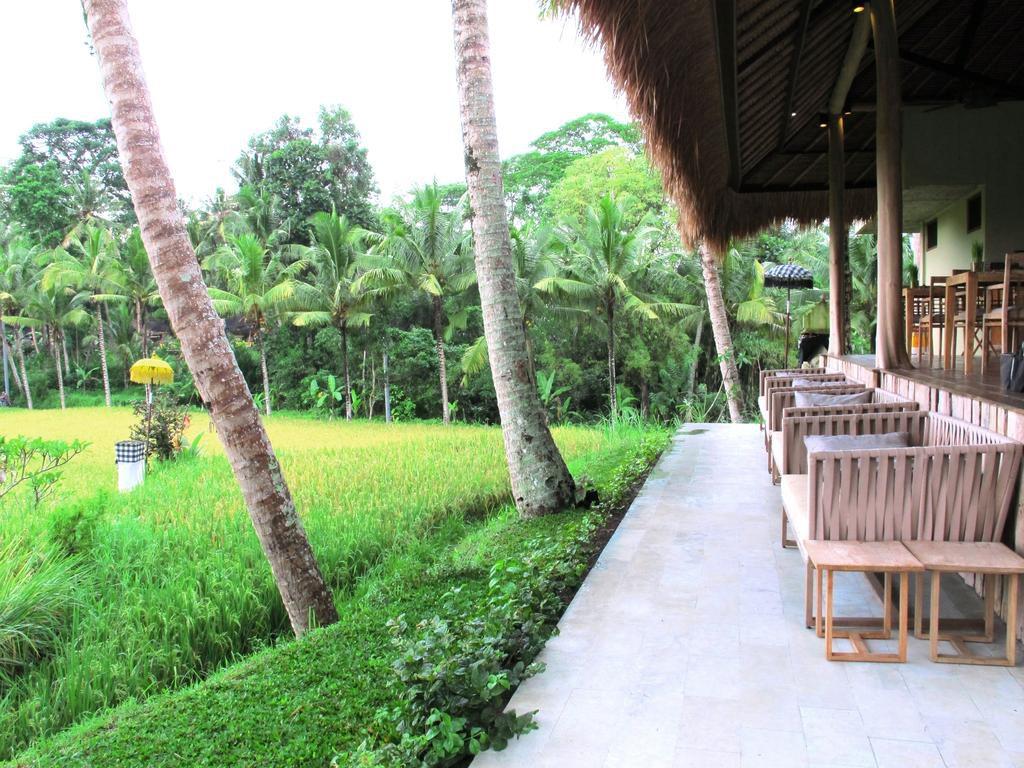 Mathis Retreat Ubud 3 1024x768 » Mathis Retreat Ubud, Penginapan Kecil dengan Jaminan Kemewahan dan Kenyamanan
