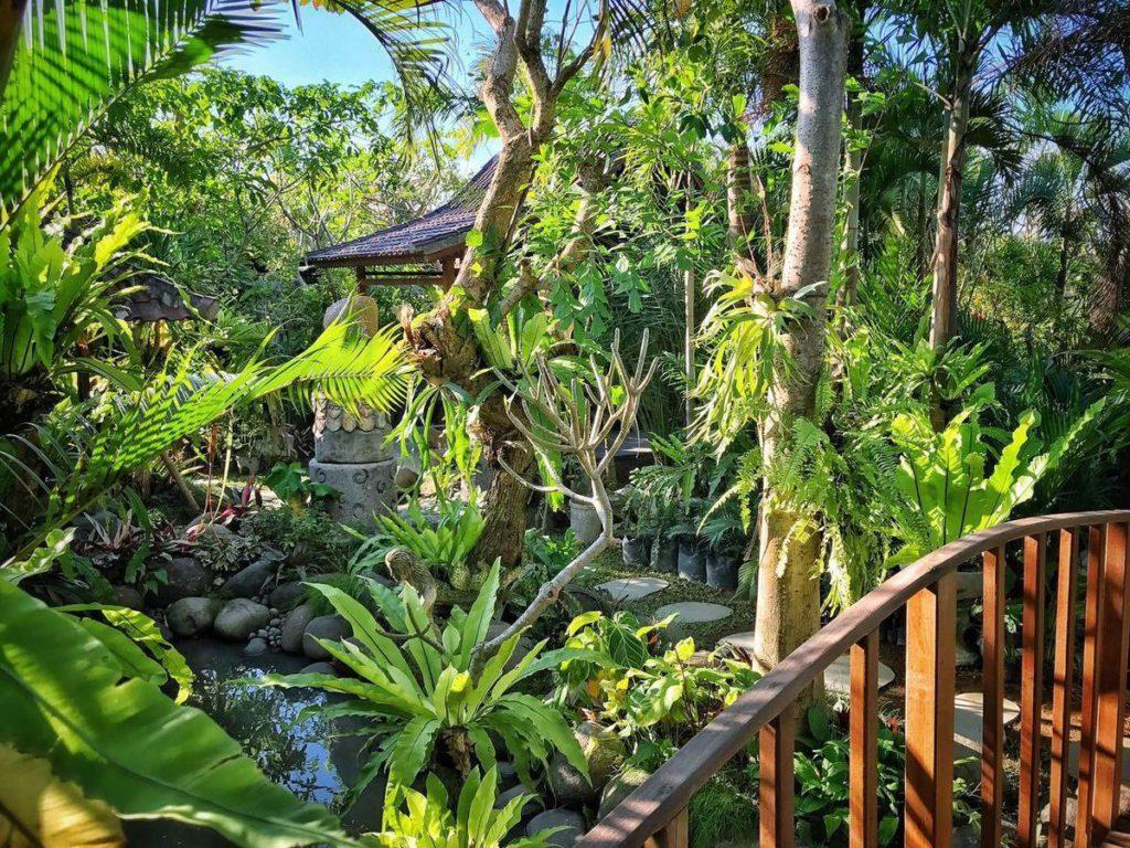 Melati Bali Homestay Canggu 1 1024x768 » Melati Bali Homestay Canggu, Penginapan Murah dengan Suasana yang Asri dan Menyejukkan