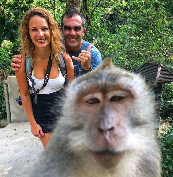 Monkey Selfie Bali 1 » Monkey Selfie Bali, Atraksi Unik yang Kini Ngehits di Monkey Forest Ubud